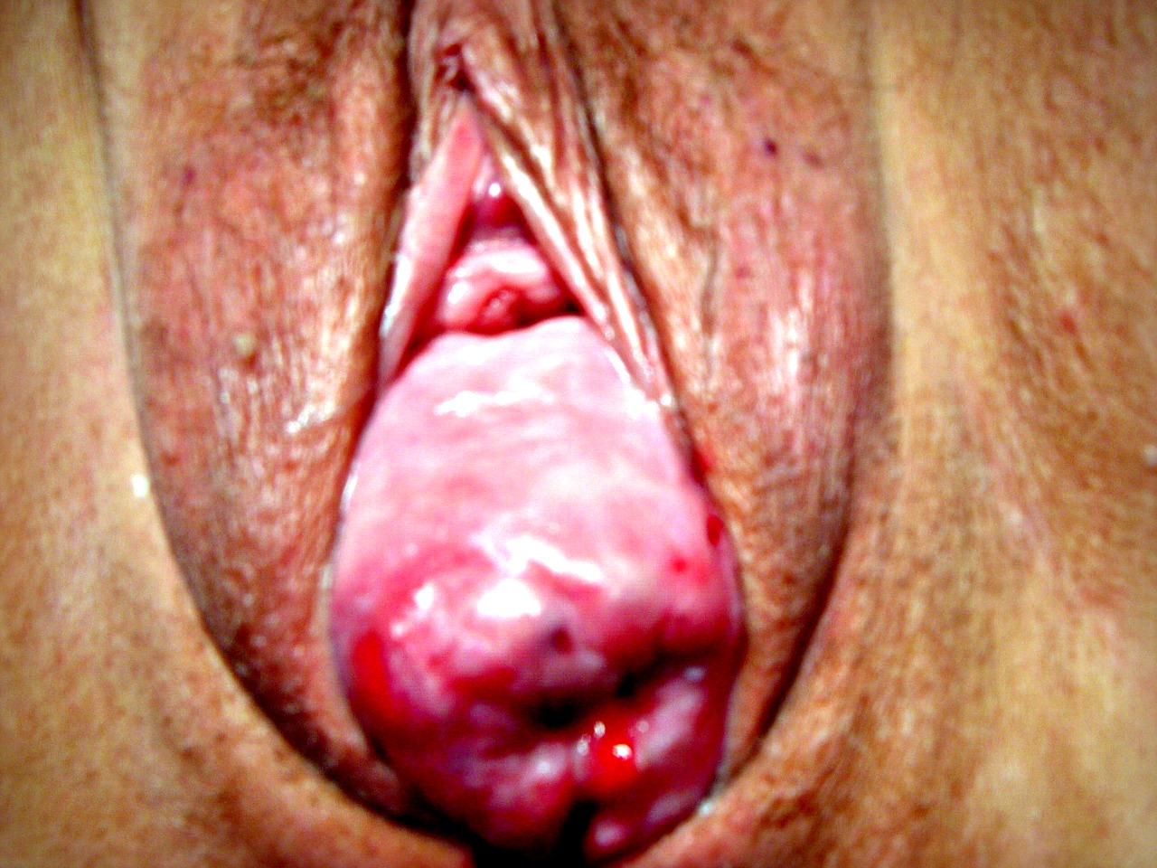 vagína bdsm video